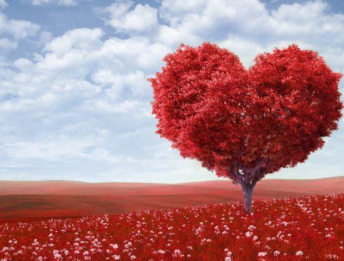 Моя любовь никому не нужна...