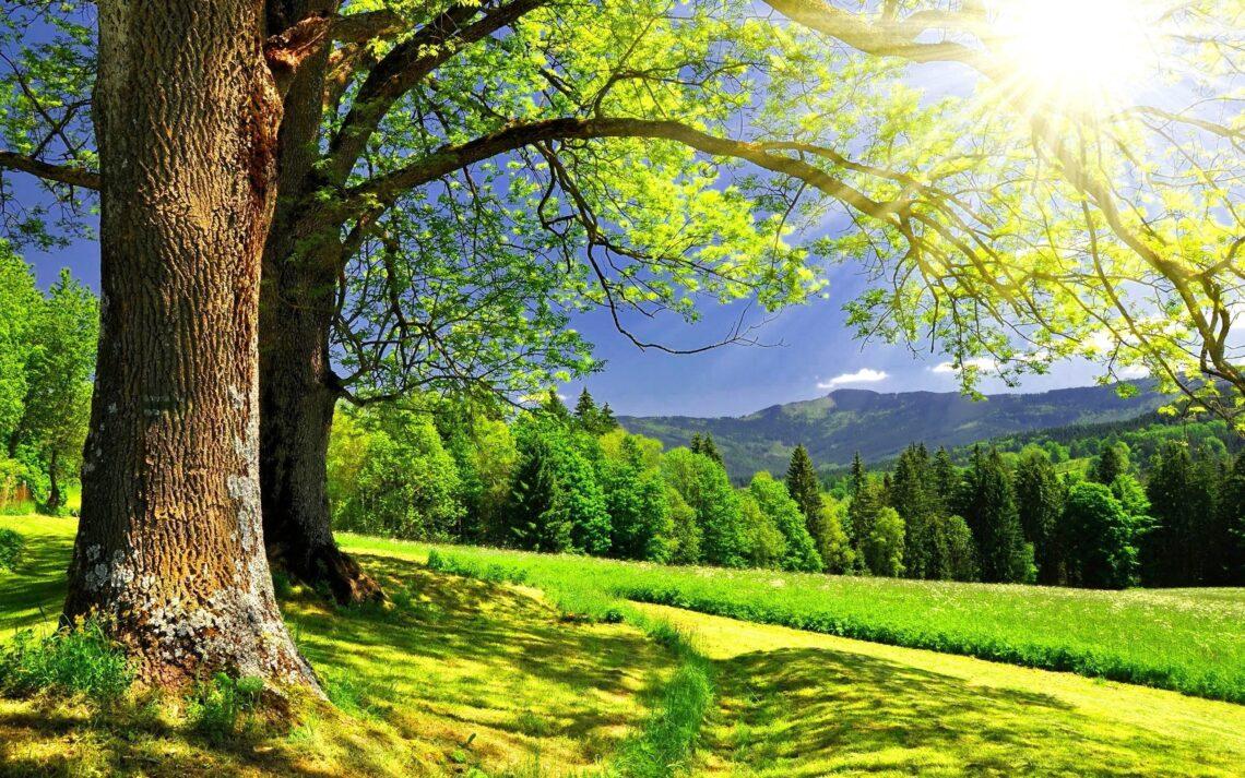 А есть ли у вас такие места на Земле, в которых вы были счастливы?